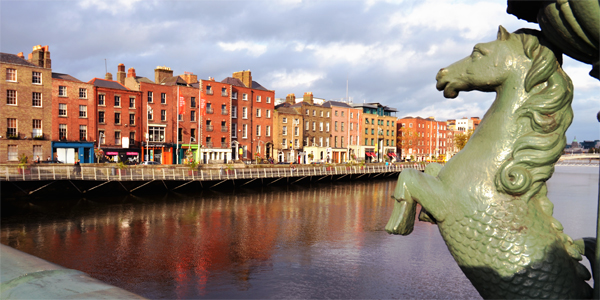 Pferd in Dublin am River Liffey