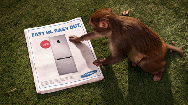 Inspiration_Pack_Samsung_Monkey_Thief