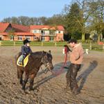 Leon auf Pony