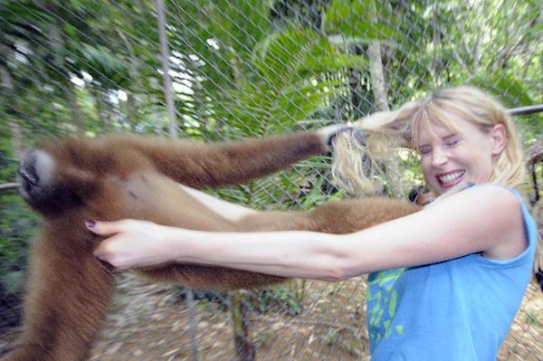 Elischeba Wilde Affen lieben blonde Haare