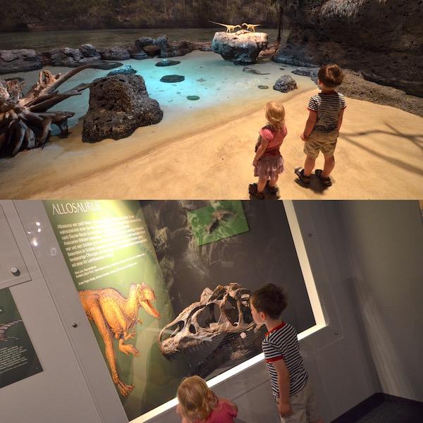Museum mit Dinos
