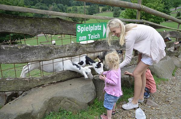 Tierpark im Saarland