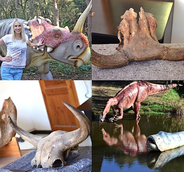 Dinosaurier Museum Kleinkinder