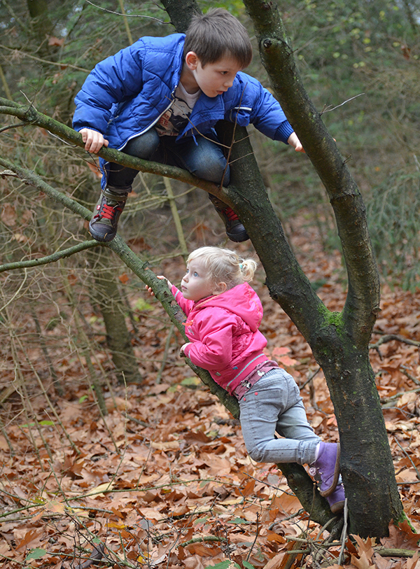im Baum klettern