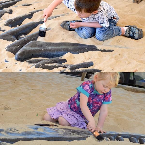 Dinosaurier Skelette ausgraben