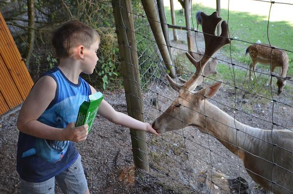 Ausflugstipps Kinder Sauerland