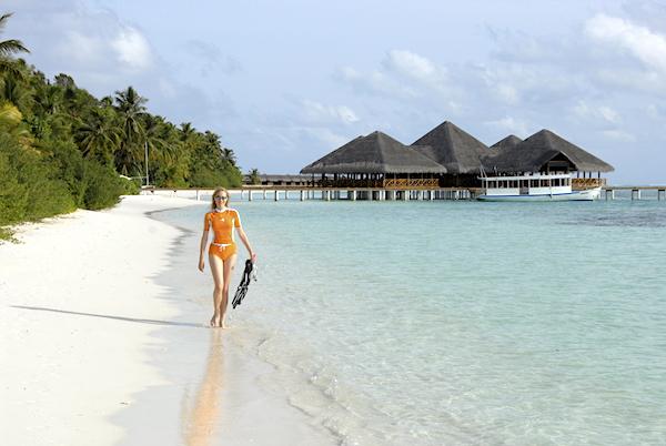 Malediven Elischeba Wilde