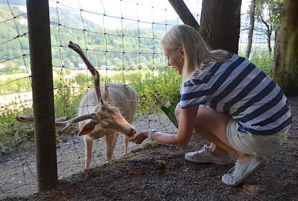 Tiere füttern im Wildpark