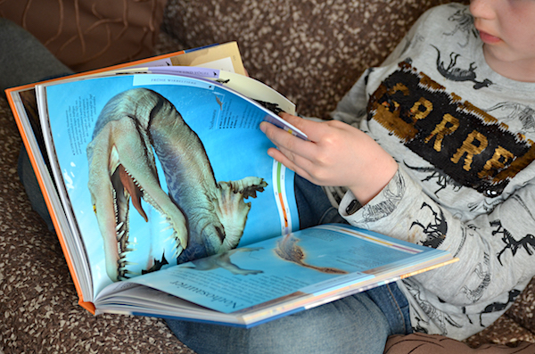 Dinosaurier Buch für clevere Kids